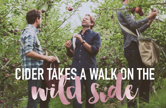 Summerland's Dominion Cider Co. uses handpicked, naturally fermented fruit in its Foundation Series of wild ciders. Contributed photo