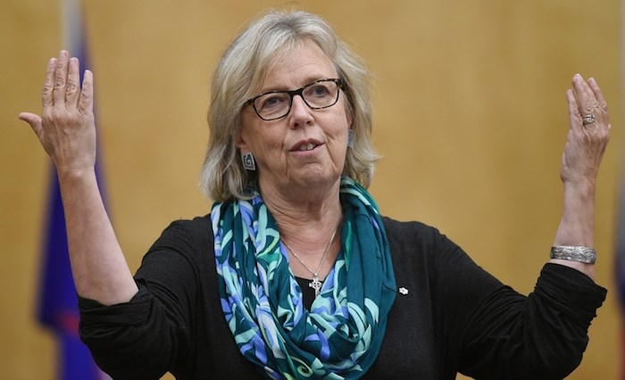 Elizabeth May announced Monday she is stepping down as the leader of Canada's Green party. File photo Dan Toulgoet