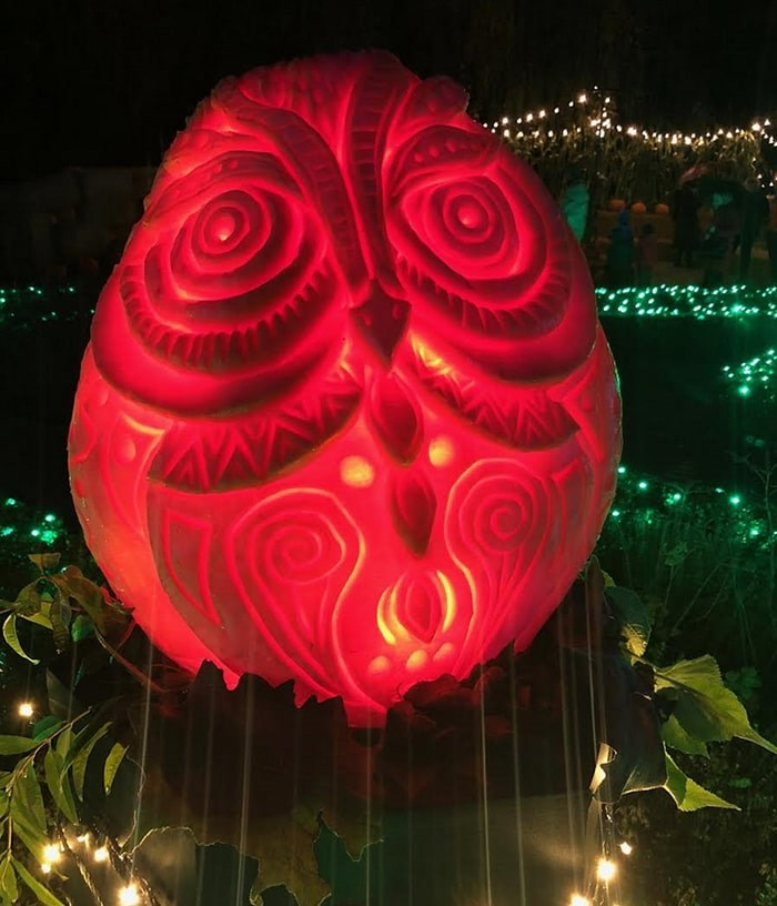 An owl carving by Bruce Waugh at this year's VanDusen Glow in the Garden. Photo: Lindsay William-Ross