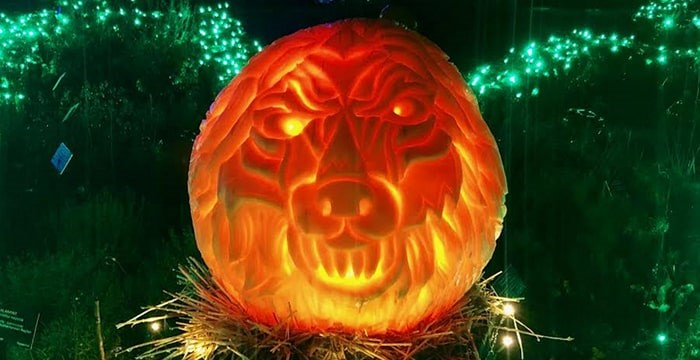 A wolf pumpkin carving by Bruce Waugh at this year's VanDusen Glow in the Garden. Photo: Lindsay William-Ross