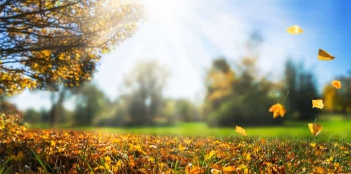 Photo: Sunny fall day / Shutterstock