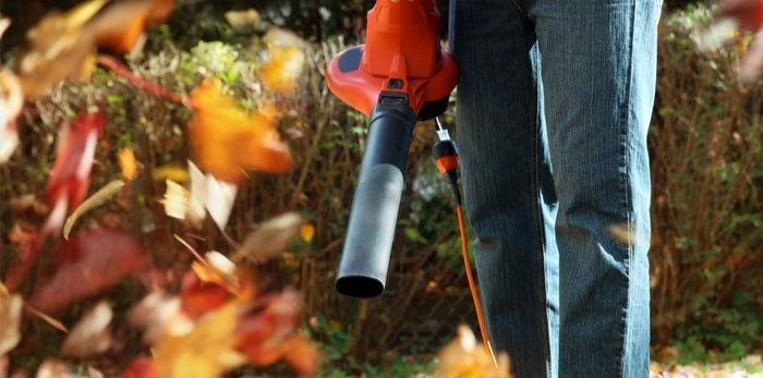 A Vancouver man received death threats for starting a petition to ban gas-powered leaf blowers in Saskatoon. Photo: Shutterstock