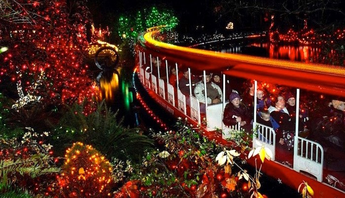The Bright Nights Christmas Train will chug merrily around in Stanley Park this holiday season. Photo: