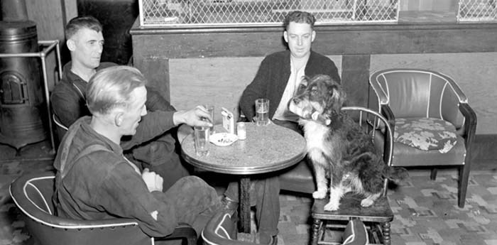 In Everything British Columbia: The Ultimate Book Of Lists, authors Bethany Lindsay and Andrew Weichel outline some of the best — and occasionally the worst — aspects of B.C., including a tale of Mike the bartending dog. Photo supplied City of Vancouver Archives