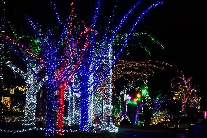 Seattle Wildlights takes place at Woodland Park Zoo this holiday season. Photo Woodland Park Zoo
