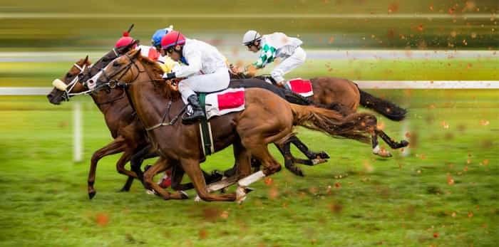 Photo: horseracing / Shutterstock