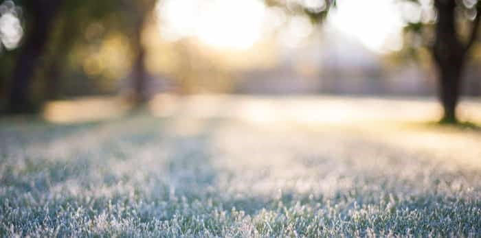 Photo: frosty morning sunshine / Shutterstock