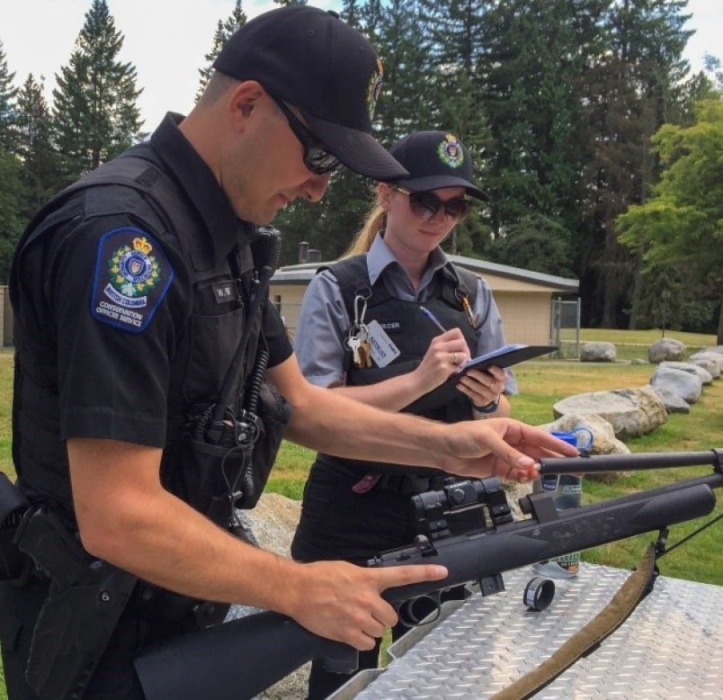 Conservation officers have had to put down several bears in the Tri-Cities this season, including six bears in Port Coquitlam last week. Photo: Diane Strandberg