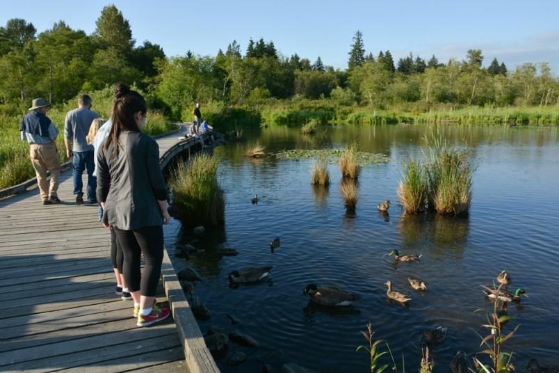 burnaby-lake