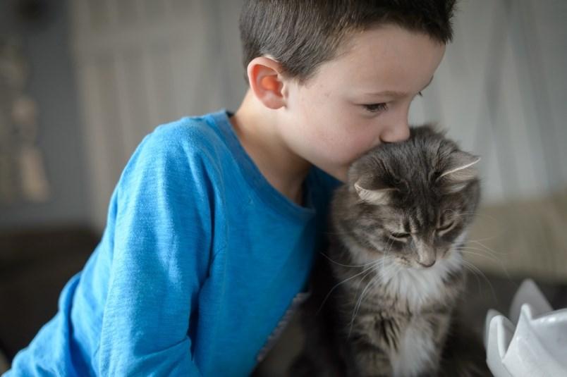 BC SPCA providing flexibility, relief for virtual summer ...