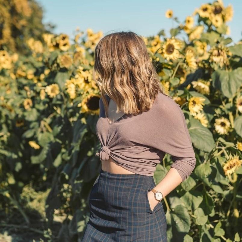 sunflower-festival