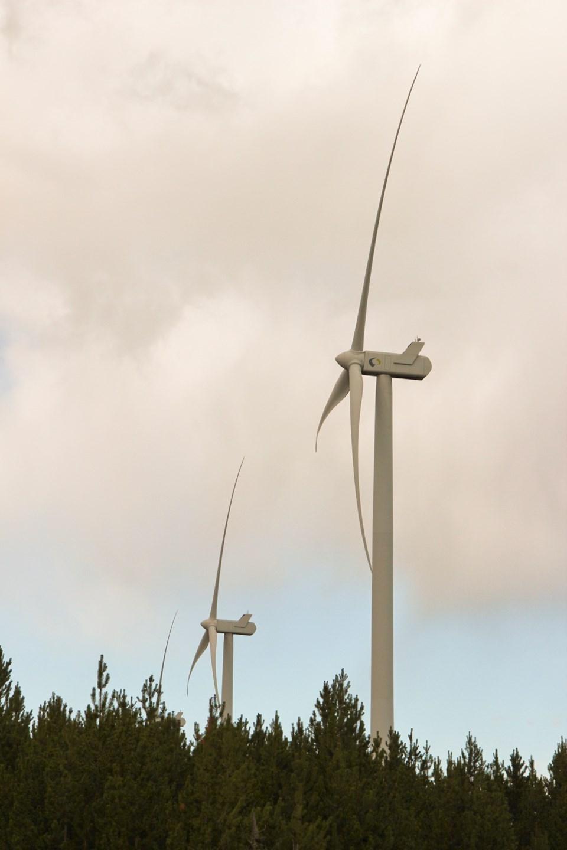 A wind-tumblerridge-rubymcbeth