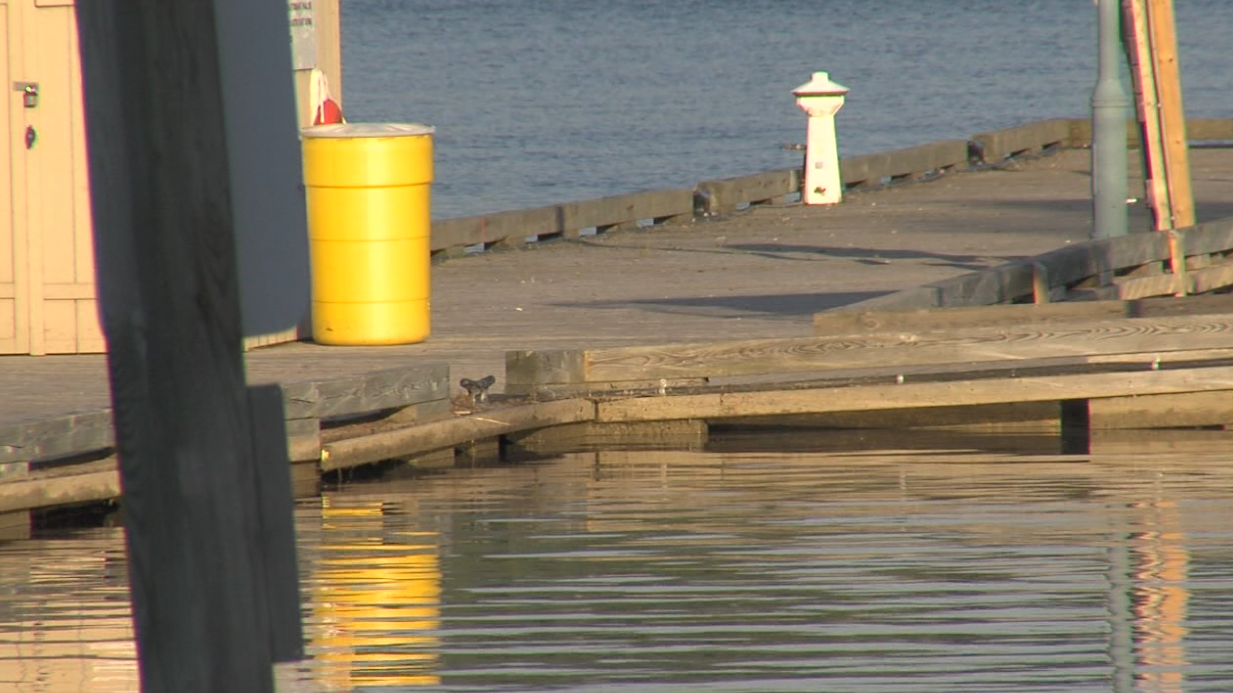 High water threatens Nipigon docks (4 Photos) - Tbnewswatch.com